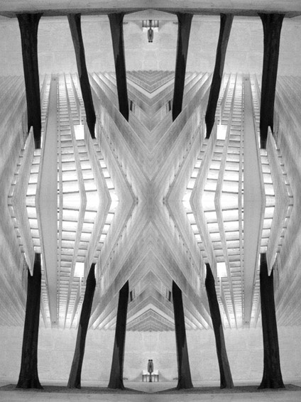 KALEIDOSCOPE collection - Alberi nel cemento ©Germano Serafini